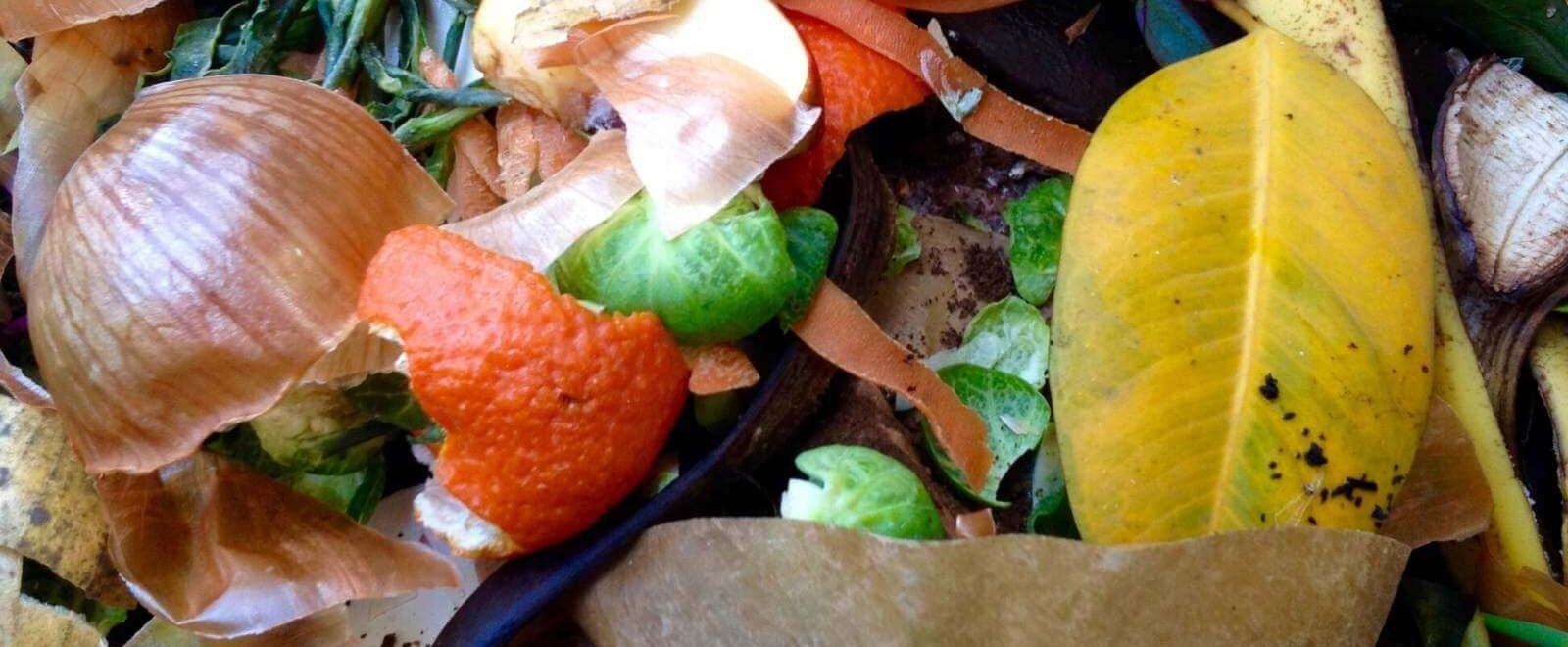 Compostabile-e-biodegradabile-significato-differenza