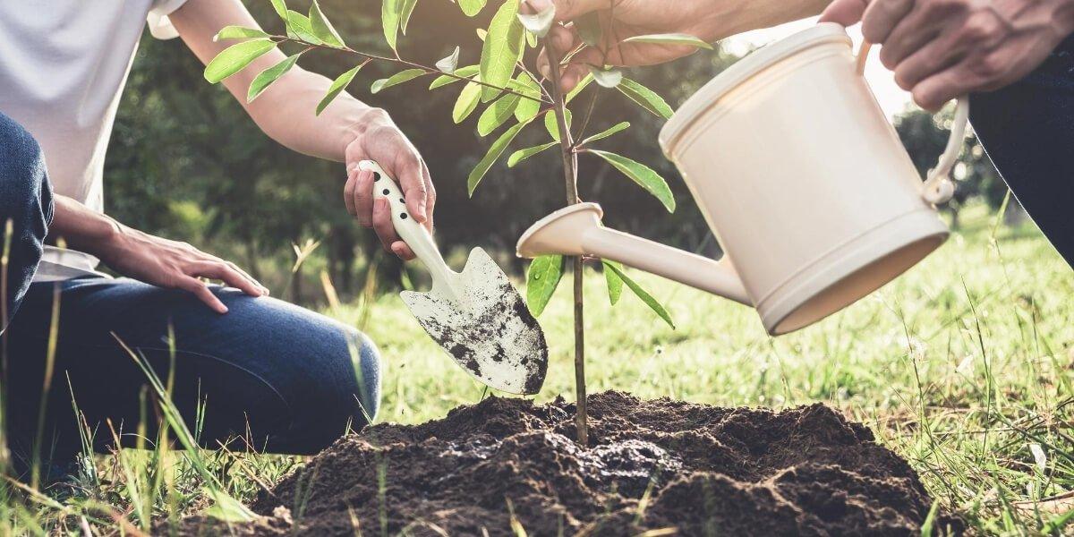 Ciclia-ambiente-gestione-rifiuti-aziendali