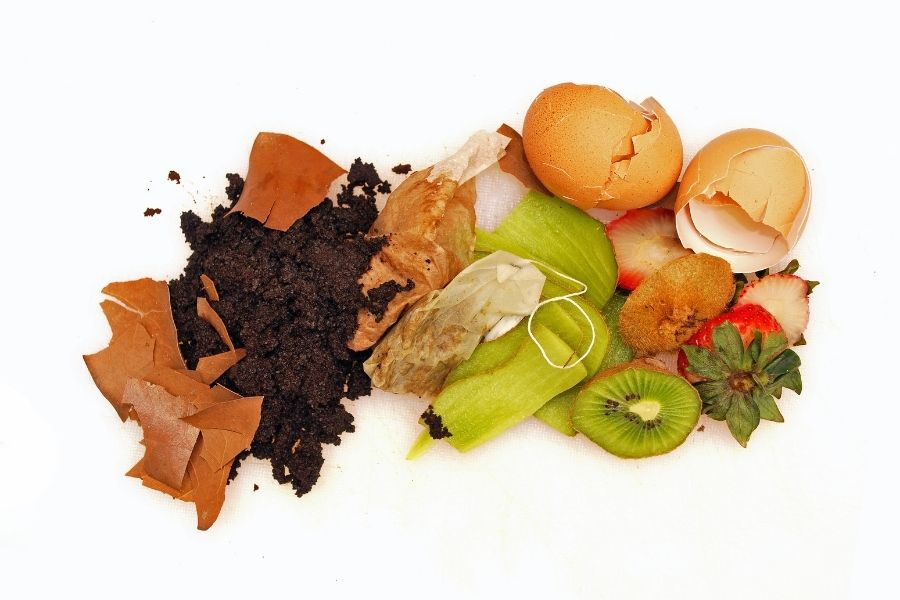 Riciclo alimentare: immagine scarti alimentari