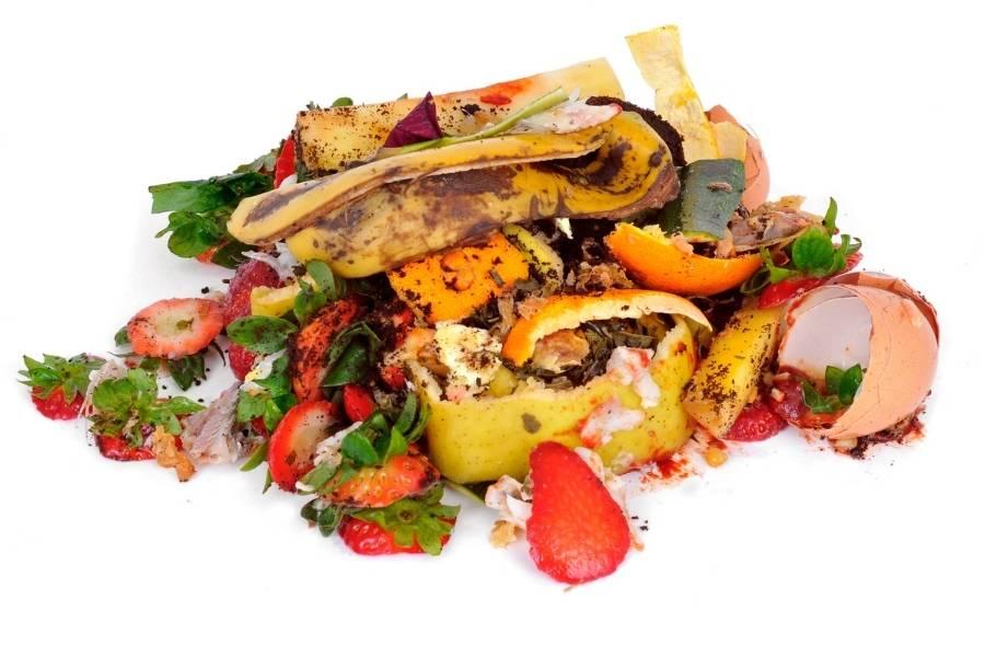 Compost rifiuti organici.